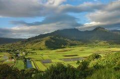 vallée de Kauai de hanalei Photo stock