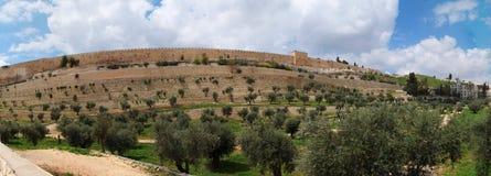 Vallée de Kidron et le support de temple à Jérusalem Image libre de droits