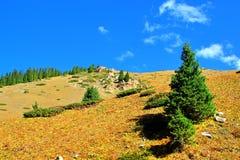 Vallée de montagne Image libre de droits