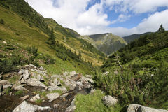 Vallée de montagne Image stock