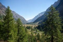 Vallée de montagne Photographie stock
