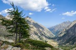 Vallée de montagne Photo stock