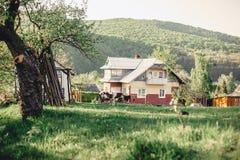 Vallée de montagne carpathienne près du village avec une vue sur le h photographie stock