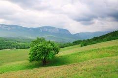 Vallée de montagne dans l'heure d'été. image libre de droits