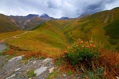 Vallée de montagne du Caucase en Géorgie Images libres de droits
