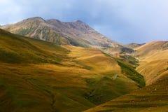 Vallée de montagne. La Géorgie. Photo stock