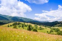 Vallée de montagne pendant le jour d'été aménagez l'été normal Image libre de droits