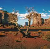 Vallée de monument, Arizona photos stock