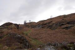 Vallée de Moorland : petites falaises rocheuses et un courant photographie stock libre de droits