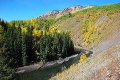 vallée de moutons de fleuve d'automne Photographie stock