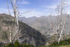 Vallée de nonnes photos stock