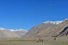 Vallée de Nubra dans Ladakh, Inde Photos stock