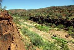 vallée de paume de l'australie Images stock