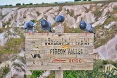 Vallée de pigeon dans Cappadocia Photographie stock libre de droits