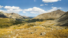 Vallée de pin, région sauvage collégiale de crêtes, Pike et San Isabel Na Photos libres de droits