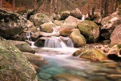 Vallée de Restonica, Corse photos libres de droits