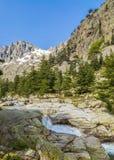 Vallée de Restonica en Corse photo stock