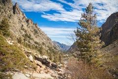 Vallée de Restonica en Corse image stock