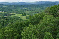 Vallée de Roanoke pendant le printemps Image stock