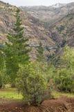Vallée de San Alfonso, traînée dans la montagne Photo libre de droits