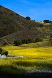 Vallée de Santa Rosa photographie stock libre de droits