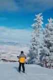 vallée de ski de cerfs communs Image libre de droits