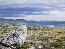 Vallée de Stroplsjodalen, Dovrefjell NP, Norvège Image libre de droits