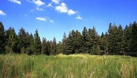 Vallée de Tahquitz Photo libre de droits