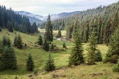 Vallée de terrain de camping de montagne Photographie stock libre de droits