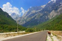 Vallée de Valbona Image libre de droits