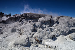 Vallée de Whakarewarewa des geysers Nouveau Zelandiiya Geotermalny Rese Photos libres de droits