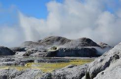 Vallée de Whakarewarewa des geysers Nouveau Zelandiiya Parc de Geotermalny Photographie stock