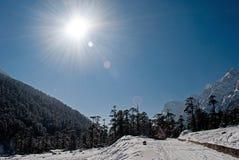 Vallée de Yumthang Image stock