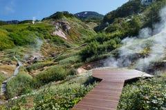 Vallée des geysers kamchatka Image libre de droits