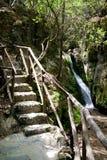 Vallée des guindineaux, Rhodes, Grèce Images stock