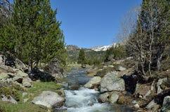 Vallée des montagnes avec un torrent glaciaire images stock