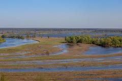 Vallée et méandres de rivière de Desna Forêt de plaine inondable d'Overflooded au printemps, l'Ukraine photographie stock libre de droits