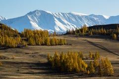 Vallée et montagne de neige, montagnes d'Altai, arête de Chuya, Sibérie occidentale, Image libre de droits