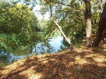 Vallée et rivière Pinios de rythmes d'Τhe Photo stock