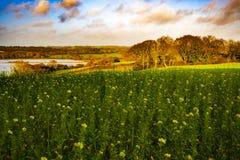 Vallée et terres cultivables inondées près de Bexhill à East Sussex, Angleterre images libres de droits