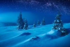Vallée féerique d'hiver couverte de neige dans une lumière de lune photographie stock libre de droits