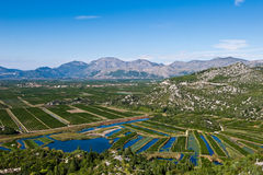 Vallée fertile de Neretva avec les collectes et le ciel bleu image stock