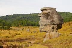 Vallée IV d'encimadas de Piedras Images libres de droits