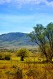 Vallée jaune photo stock