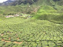 Vallée luxuriante verte photographie stock libre de droits