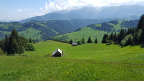Vallée merveilleuse de montagne complètement des prés verts Photos stock