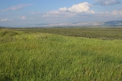 Vallée verte en Israël à côté de la Jordanie photo libre de droits