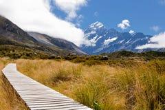 Vallée W Aoraki, cuisinier de Mt, Alpes méridionaux, NZ de verre image libre de droits