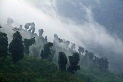 Vallées de l'Himalaya mystiques image stock