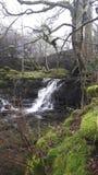 Vallées de Yorkshire de cascade Images stock